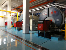 China horizontal 10 ton coal fired steam boiler for food processing