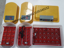 Home Use Small Egg Incubator, Quail Egg Incubator for sale, Mini Egg Incubator in Dubai for sale