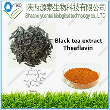 High Natural Purity Black Tea Extract Theaflavin powder