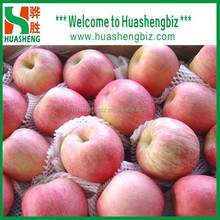 Fresh Delicious and Sweet Fuji Apples