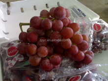 Chinese red globe Grapes