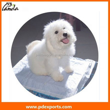 professional disposable pet pad for training