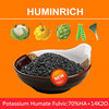 Huminrich High Active For Plants Under All Conditions Fulvate Potassium Humate From Leonardite