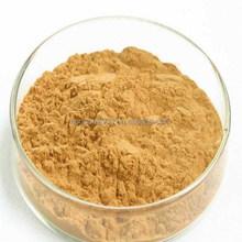 Tea Extract Type Yerba Mate Extract Powder