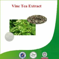 Factory supply Natural & Pure favorable-price Vine Tea Extract, Vine Tea P.E, Green Tea