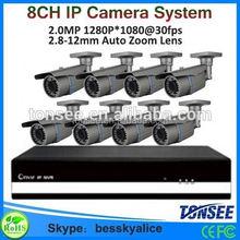 Bessky big promotion 8ch 1080P IP Camera Nvr kit,google,hot ip camera system