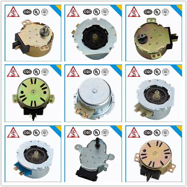 zhejiang popular sale high quality delicated appearance 24v ac motor synchronous