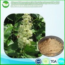 100% natural tripterygium wilfordii extract / thunder god vine extract
