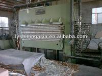 melamine faced plywood production hotpress machine