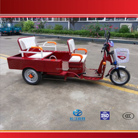 3 Wheel Electric Tricycle for Passenger or Cargo Made in China