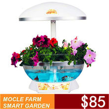 Mocle Farm hydroponic unit Factory Direct