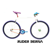 Ruder Berna Taiwan Made special halley used bike bicycle in japan osaka