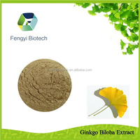 Health Care Food Ginkgo Biloba Extract/China herbal extract Ginkgo Biloba for softgel