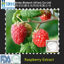 100% Good Quality Raspberry Ketone from Professional Manufacturer