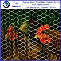 galvanized hexagonal wire mesh/ Hexagonal Mesh (Factory)