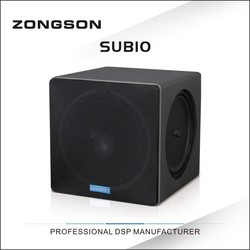 SUB10 10 inches subwoofer with totally-enclosed design