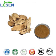ISO Certified Natural Costus Root Extract Powder 5:1 10:1