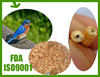 High Brotein Dried Mealworms for pets food