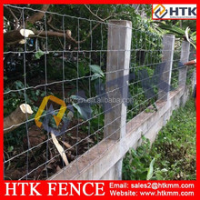 SGS/ISO/BV Factory Hinge Joint Horse Fencing Wire