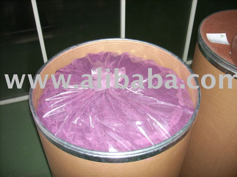 Maqui BERRY secado por pulverización