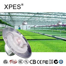 XPES grow lighting 240w LVD bulb for low cost greenhouse