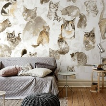 Home decor Non-woven wallpaper art wallpaper for home with sex cat theme for rooms