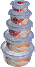 wholesale 5pcs plastic airtight food storage container with lids