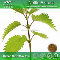 Top Quality Nettle Root Extract,Nettle P.E. Phytosterol 9%