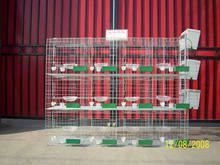 breeding 24 pigeons full set automatic commercial pigeon cage