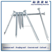 Polished White Steel Concrete Nails/Steel Nails China