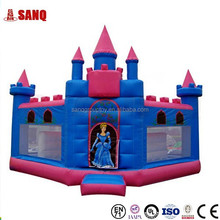 Theme Park Inflatable Water Slide Inflatable Castle Slide