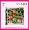 Corrugated Carton Box for Shipping and Packaging carton boxes for fruits