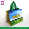 favorable price for good sale pp woven lamination shopper bag