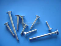 DIN603 Cup head bolts fasteners