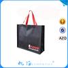 Promotion Pp Non woven Bag,Custom Pp Non Woven Bag,Non Woven Shopping Bag