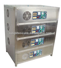 Food processing working shop /Lonlf-OXF100 /corona discharge ozone generator 100 Grams/Hour