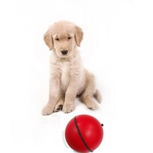 plastic electric puppy toy& pet toy ball