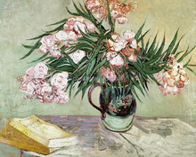 Oleanders And Books Wholesale Oil Art Picture