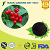 Chinese supplier 25% Anthocyanidin Cranberry Extract Powder