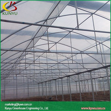 Large Sawtooth type pvc greenhouse kits wall greenhouse