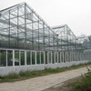 plastic roof greenhouses agricultural used greenhouse frames/equipment for sale