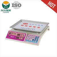 YS-199 plastic electronic scale cover 30kg/40kg ABS New Materials Body ,Nice Appearance price computing Scales YS-199,accurate