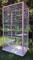 QQ Pet Factory Wholesale Metal Large Cat Cages For Sale & New Design Breeding Cage Cat