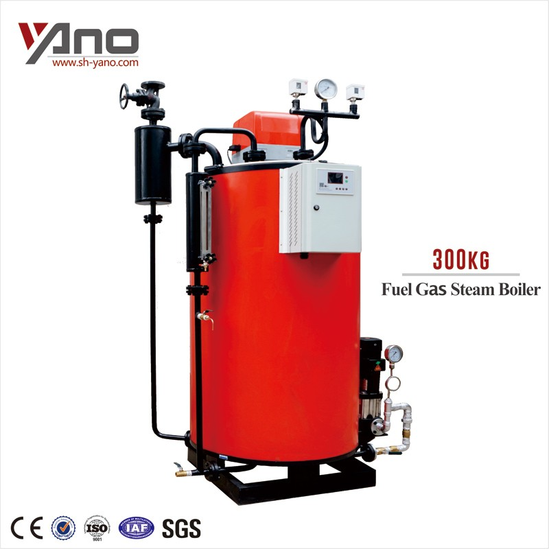 New Manufacture With Stainless Steel Tank 35-1000kg/h Gas Steam ...
