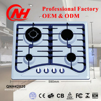 Multifunction electric cooker with gas