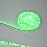 Waterproof LED Strips Lights SMD 5050 Green 12V Smart Lighting