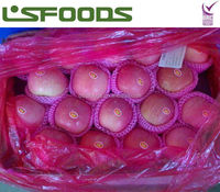 2014 crop fresh red fuji apple