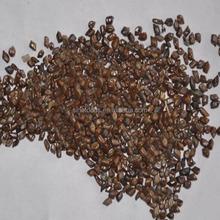 Jue ming zi zhong zi negro alta pureza semilla para semen cassiae semillas