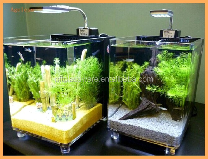 how to clean large fish tank