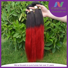 Raw unprocessed virgin remy 12inch straight mongolian two tone human hair